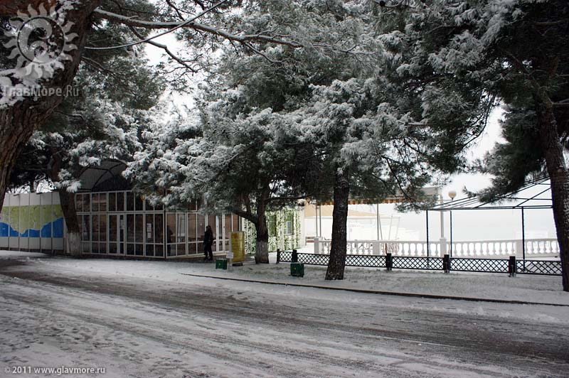 Геленджик завалило снегом фото 26