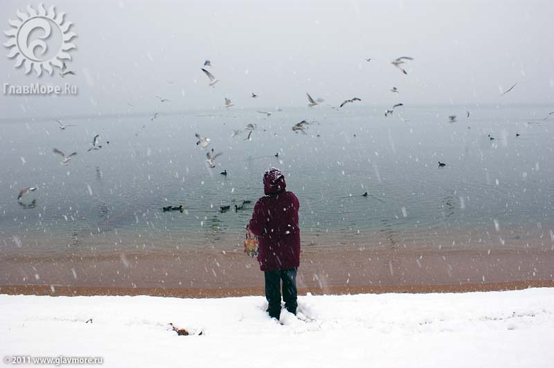Геленджик завалило снегом фото 20