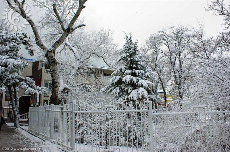 В Геленджике выпал снег фото 4