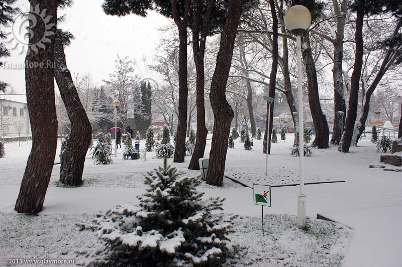 Геленджик завалило снегом фото 24