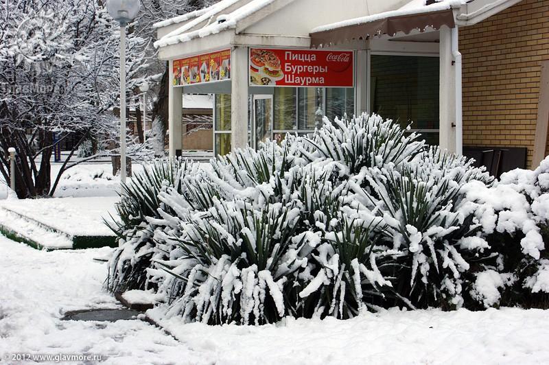 В Геленджике выпал снег фото 1