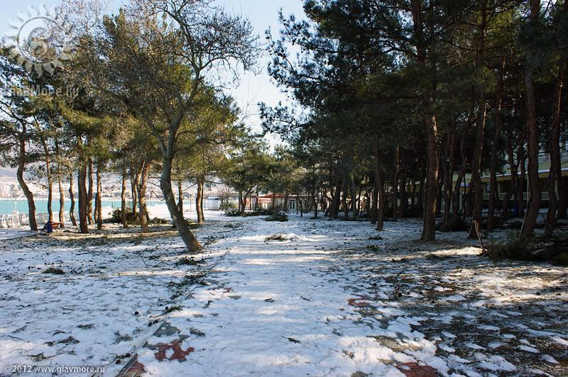 Норд-ост в Геленджике фото 43