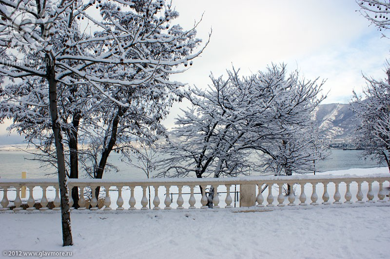 В Геленджике выпал снег фото 14