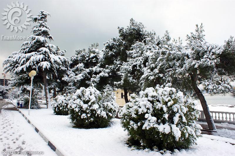 В Геленджике выпал снег фото 7